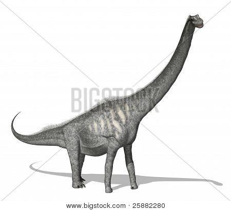 Sauroposeidon Dinosaur