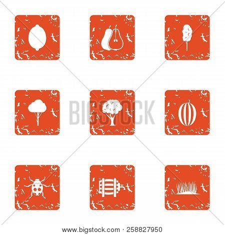 Savory Icons Set. Grunge Set Of 9 Savory Icons For Web Isolated On White Background