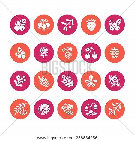 Forest Berries Colored Flat Glyph Icons - Blueberry, Cranberry, Raspberry, Strawberry, Cherry, Rowan