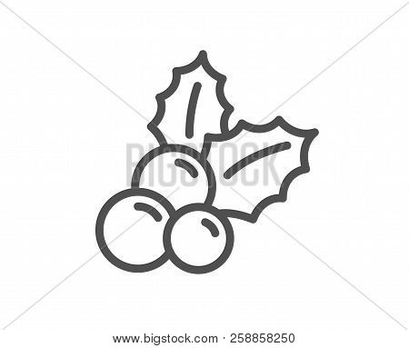 Christmas Holly Line Icon. Ilex Aquifolium Sign. Quality Design Element. Classic Style Holly Aquifol
