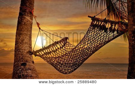 Sunset Hammock at Beach Shore