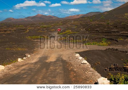 Dusty road in the Lanzarote island in between the grapewine fields