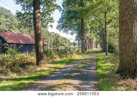 Old Dutch Country Road With Tall Trees On Both Sides. On The Left Is A Historic Barn From The Second
