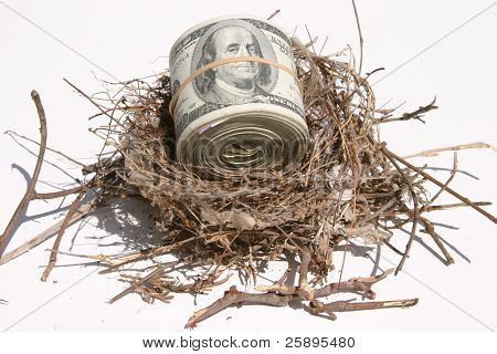 one hundred dollar bills rolled up and held by a rubber band in a bird nest representing finincial freedom and security in the image of a Nest Egg