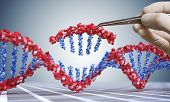 Genetic engineering, GMO and Gene manipulation concept. Hand is inserting sequence of DNA.  3D illustration of DNA. poster