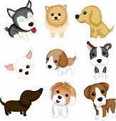 A vector illustration of different dog breeds poster