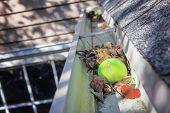Tennis ball stuck in gutter on a roof poster