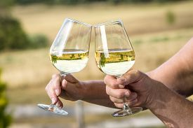 Wine Glasses With Reflections Of Beautiful Nature Saying Cheers With White Wine