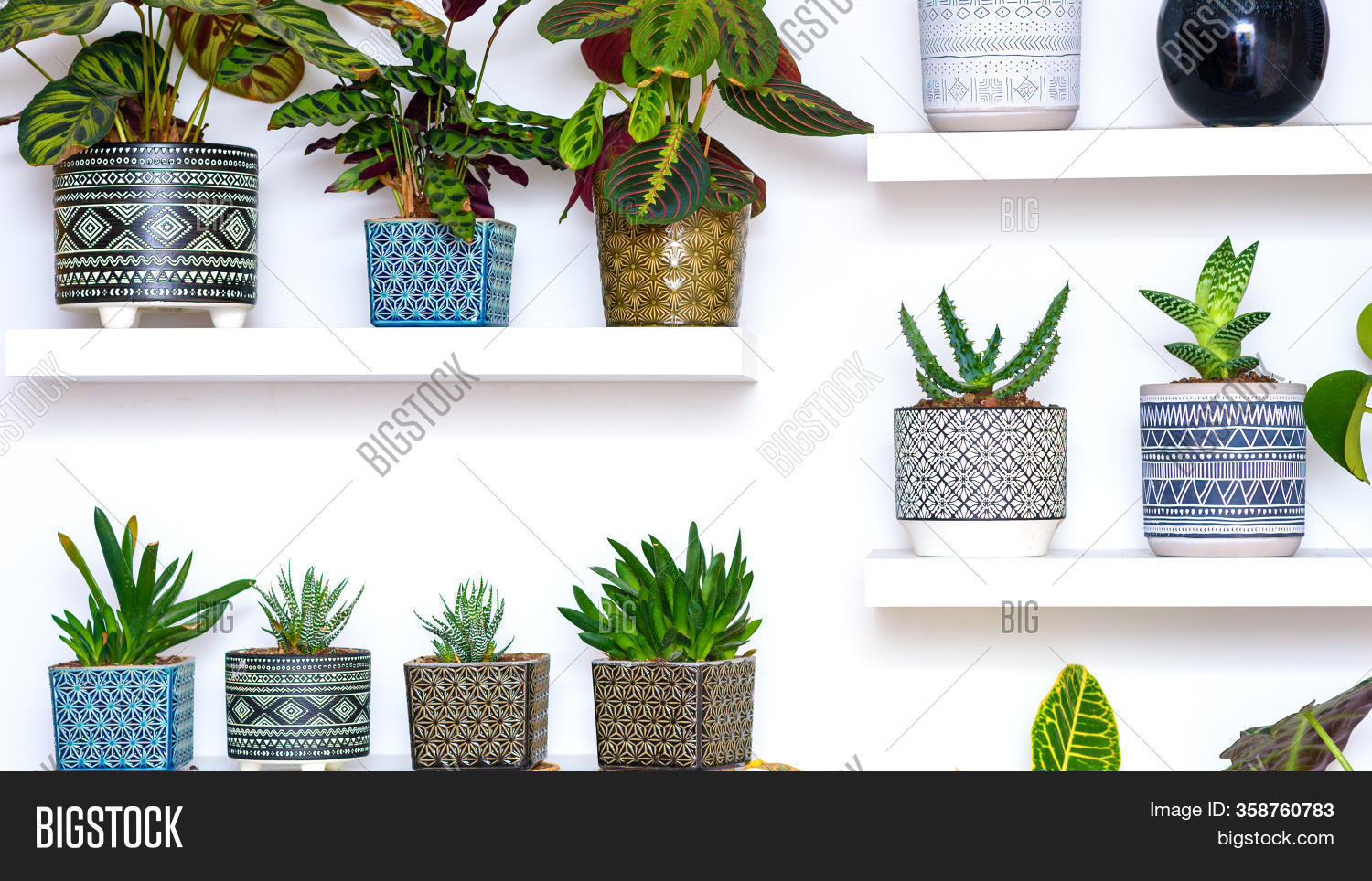 Home Gardening Banner Image Photo Free Trial Bigstock