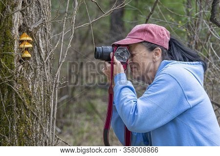 Horizontal Sideview Shot Of A Mature Female Photographyer Photographing Some Unusual Mushrooms Growi