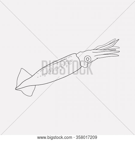 Squid Icon Line Element. Illustration Of Squid Icon Line Isolated On Clean Background For Your Web M