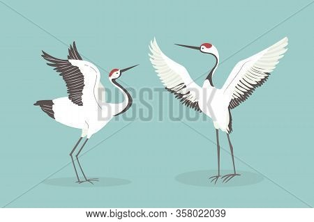 Red Crowned Crane Flaps Wings Cartoon Vector Illustration. Mating Dance Of Birds