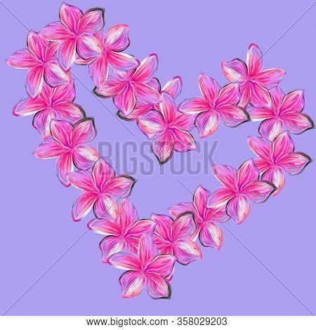 Pink Frangipani Plumeria Flowers In Shape Of Heart On Lilac Background.valentine Card. Mothers Day C