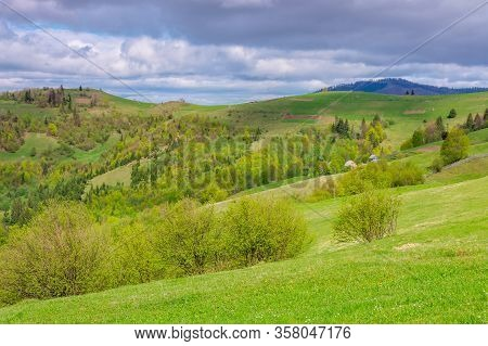 Rolling Hills And Grassy Meadows Of Mountainous Countryside. Beautiful Rural Landscape In Springtime