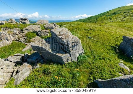 Rocks On The Alpine Hillside Meadow. Stunning Summer Nature Scenery. Green Grass On The Hills And Fl