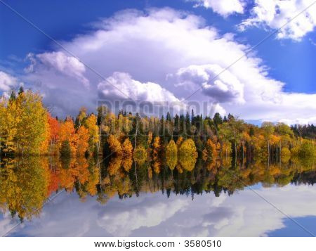 Autum Reflections