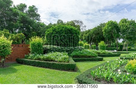 Topiary English Formal Garden Style, Gardens With Geometric Shape Of Bush And Shrub, Decoration With