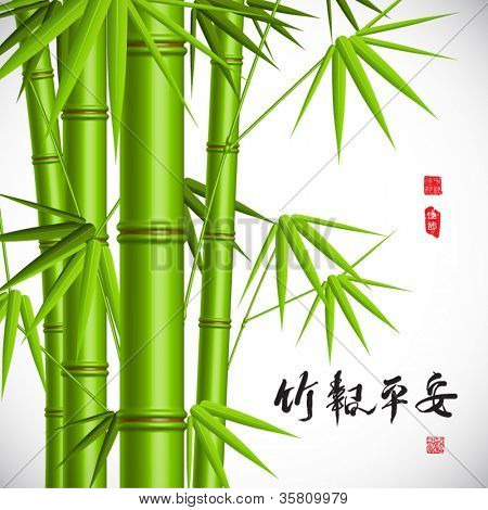 Vector Oriental Bamboo Translation: Wellbeing