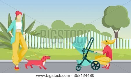 Cartoon Women On Walk In Street. Dormitory Area Or City Park. Elegant Lady Going With Dog. Young Mot