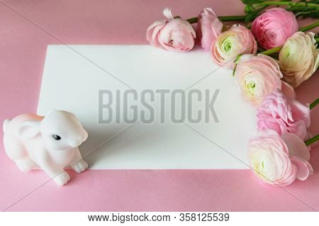 Nice Pink Greeting Card With White Space For Text, Decorated With Tender Bouquet Of Fresh Ranunculus