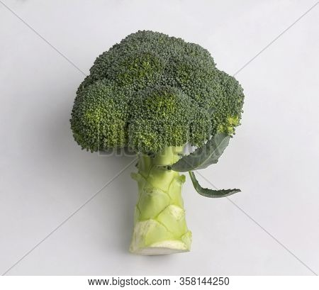 Fresh Broccoli With Leaves Isolated On White Background