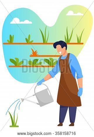 Young Man Gardener Or Florist In Apron Working In Botanical Garden Or Home Backyard Terrace Orangery