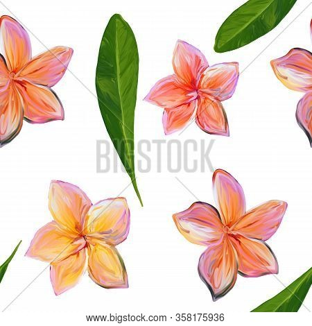 Frangipani Plumeria Tropical Flowers On White. Seamless Pattern Background. Tropical Floral Summer S