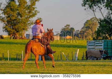 Gaucho On Horse At A Criolla Festival In Caminos, Canelones, Uruguay, South America, South America,