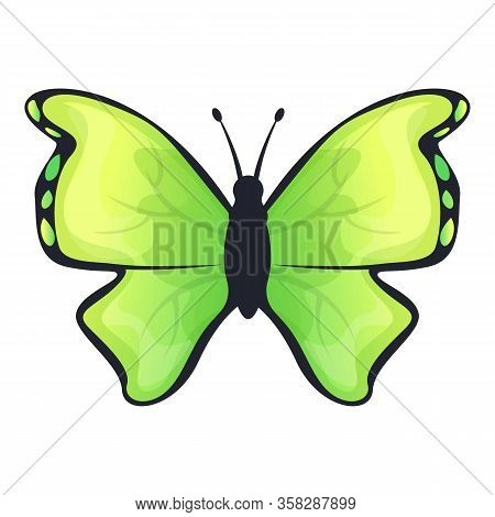 Green Lime Butterfly Icon. Cartoon Of Green Lime Butterfly Vector Icon For Web Design Isolated On Wh