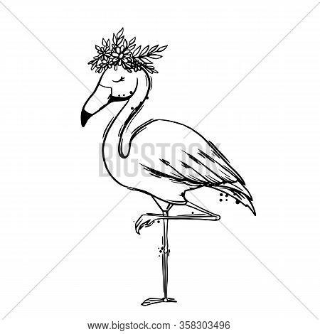 Flamingo Bird Black Outline On White Background Isolated