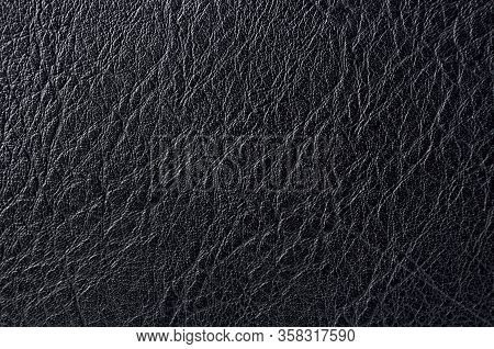 Rough Texture Of Black Animal Skin, Closeup