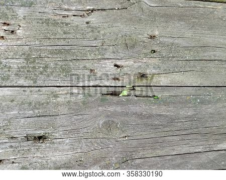 Texture Of Old Shabby Rustic Wooden Fence Made Of Planks, With Rusty Nails, Grunge Background