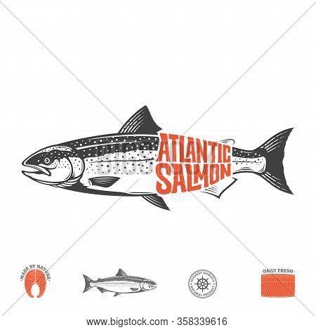 Vector Atlantic Salmon Label