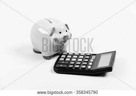 Accounting Business. Accounting Software. Finances And Investments. Piggy Bank Pink Pig And Calculat