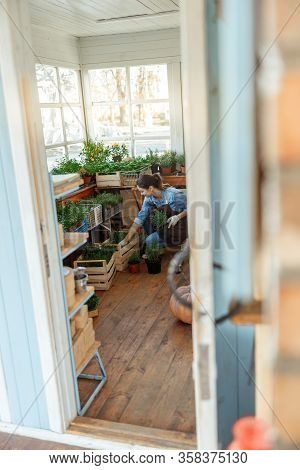 Young Female Herbalist Staring At Plants Indoors