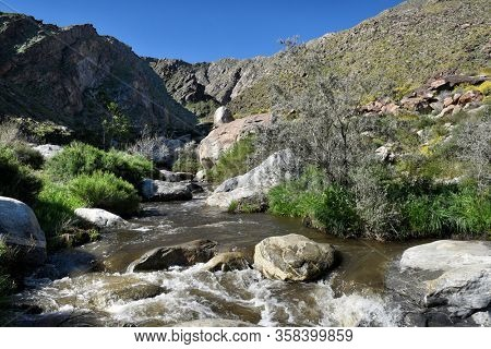 Tahquitz Canyon trail along the creek. The canyon is one of the most beautiful and culturally sensitive areas of the Agua Caliente Indian Reservation.