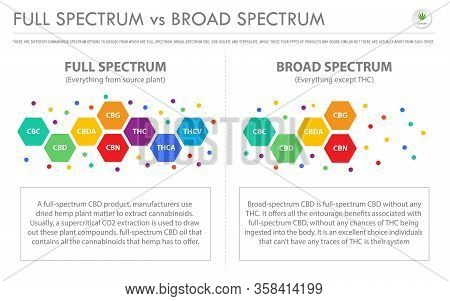 Full Spectrum Vs Broad Spectrum Horizontal Business Infographic