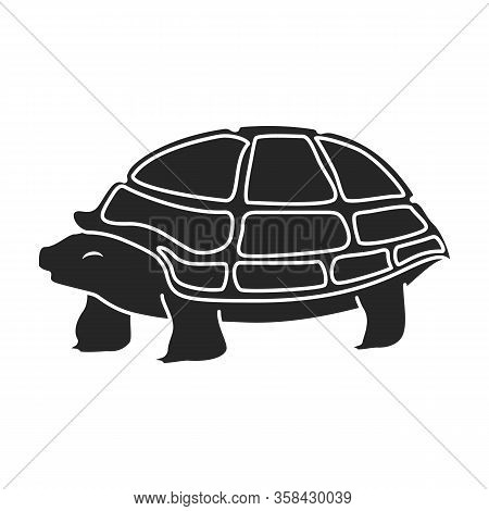Sea Turtle Vector Icon.black Vector Icon Isolated On White Background Sea Turtle.