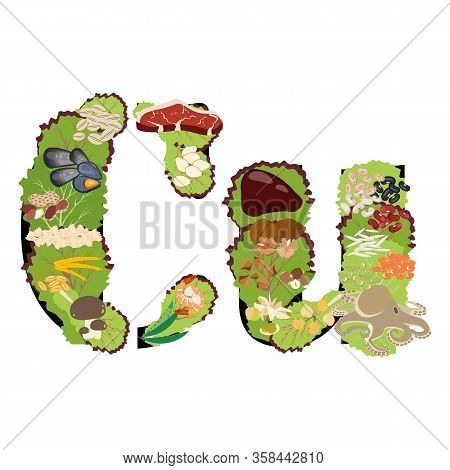 Copper Cu Microelement Mineral Healthy Organic Nutrition Vector Illustration