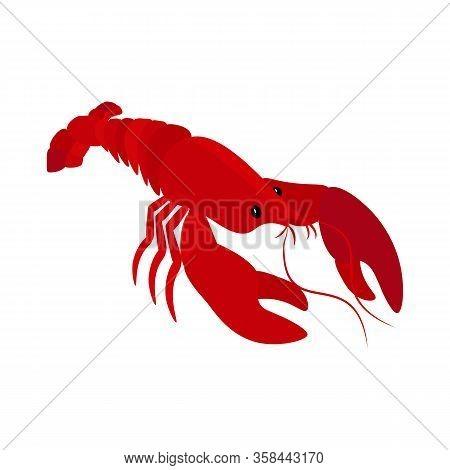 Lobster Delicacy Seafood Organic Delicious Vector Illustration