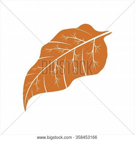 Leaf Icon, Isolated Leaf Icon With White Background, Simple Sign Leaf Icon, Brown Leaf Icon, Leaf Ic