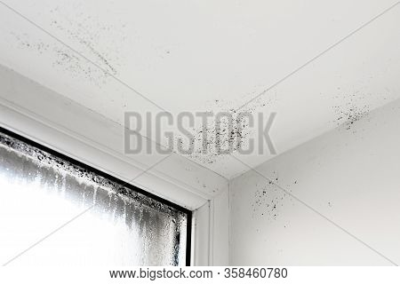 The Damp Is Attacking The Wall. Mold On Window. House Window With Damp And Condensation