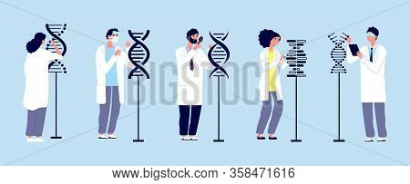 Dna Research. Scientists Studying Molecules. Human Structure, Genetic Engineering And Scientific Exp