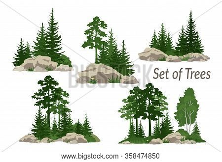 Set Landscapes, Isolated On White Background Coniferous And Deciduous Trees, Flowers And Grass On Th