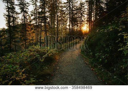 Beautiful Autumn Sunny Babia Gora