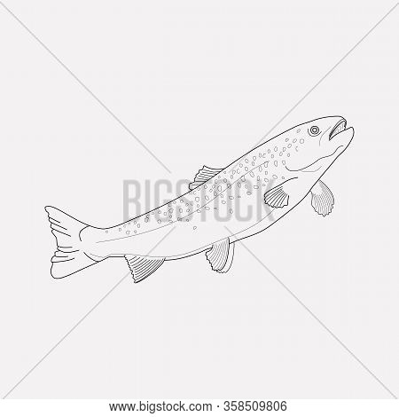 Trout Fish Icon Line Element. Vector Illustration Of Trout Fish Icon Line Isolated On Clean Backgrou