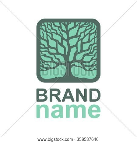 Tree Of Life Logo In A Square Frame. Thick Crown, Brown Branches, Trunk On A Green Background. Eco I