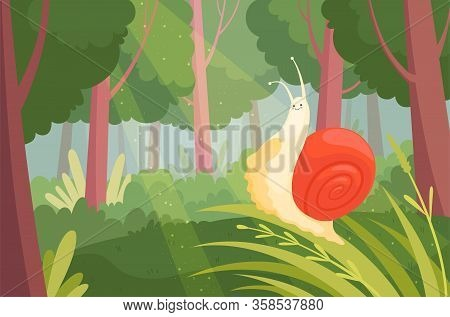 Snails In Wood. Slime Slow Moving On Green Grass In Wood Nature Animal Garden Snail Vector Illustrat