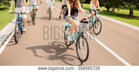 People Riding Bicycles In City Park On Asphalt Road. Gealthy Lifestyle And Health Care. Cut View Of