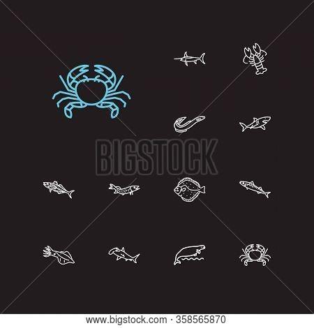 Aquatic Icons Set. Scad And Aquatic Icons With Flatfish, Sea Cow And Hammerhead Shark. Set Of Crayfi